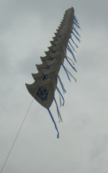 The 50 Blue Peter kites flying